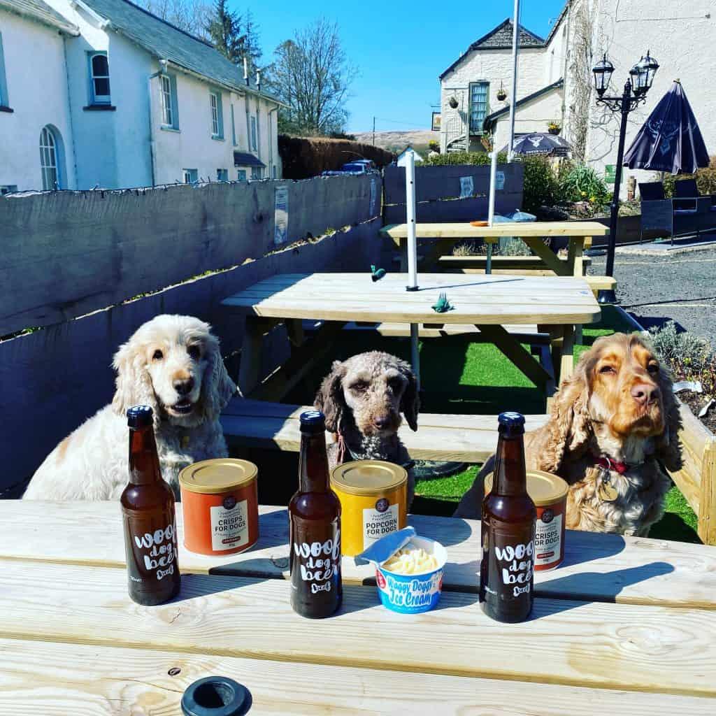 dog friendly pub Exmoor